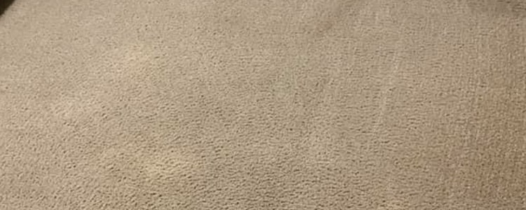 End of Lease Carpet Cleaning Joondalup